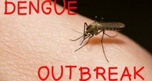 5-Ways-You-Can-Save-Yourself-From-Dengue