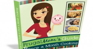 Frugal Mom's Guide To Once A Month Cooking